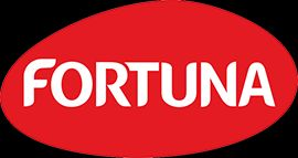 Fortuna_LOGO_pantone copy