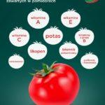Fakty i mity – czyli co wiemy o pomidorach i powstających z nich przetworach pomidorowych