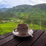 Z miłości do cejlońskiej herbaty